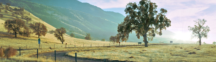 Tehachapi area in Southern California